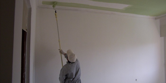 pintor profesional y barato